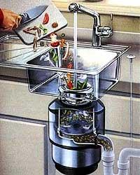 Future biofuel?