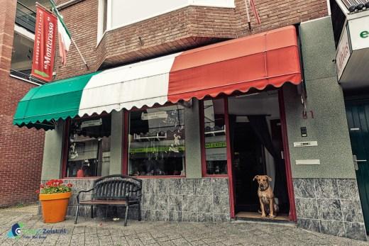 De hond van Restaurant Monterosso op de Voorheuvel