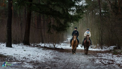 bos sneeuw, doorspuiten gemeente Zeist, Kerkstraat, Meisjes, paard, paardrijden, riolering, Riool, ruiters, Sfeerbeelden., sneeuwval, Zeist, Zeister woud