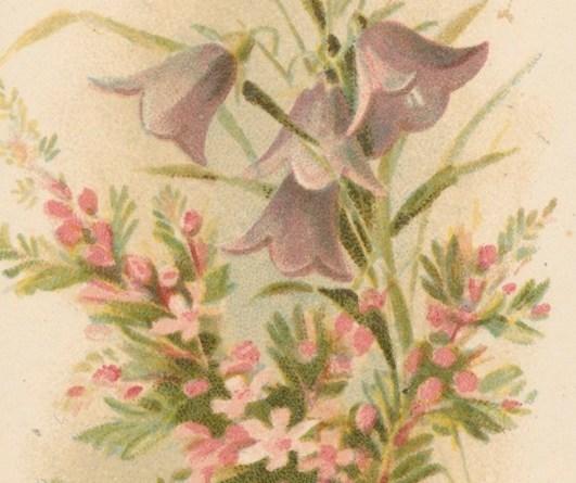 Blumensträusschen