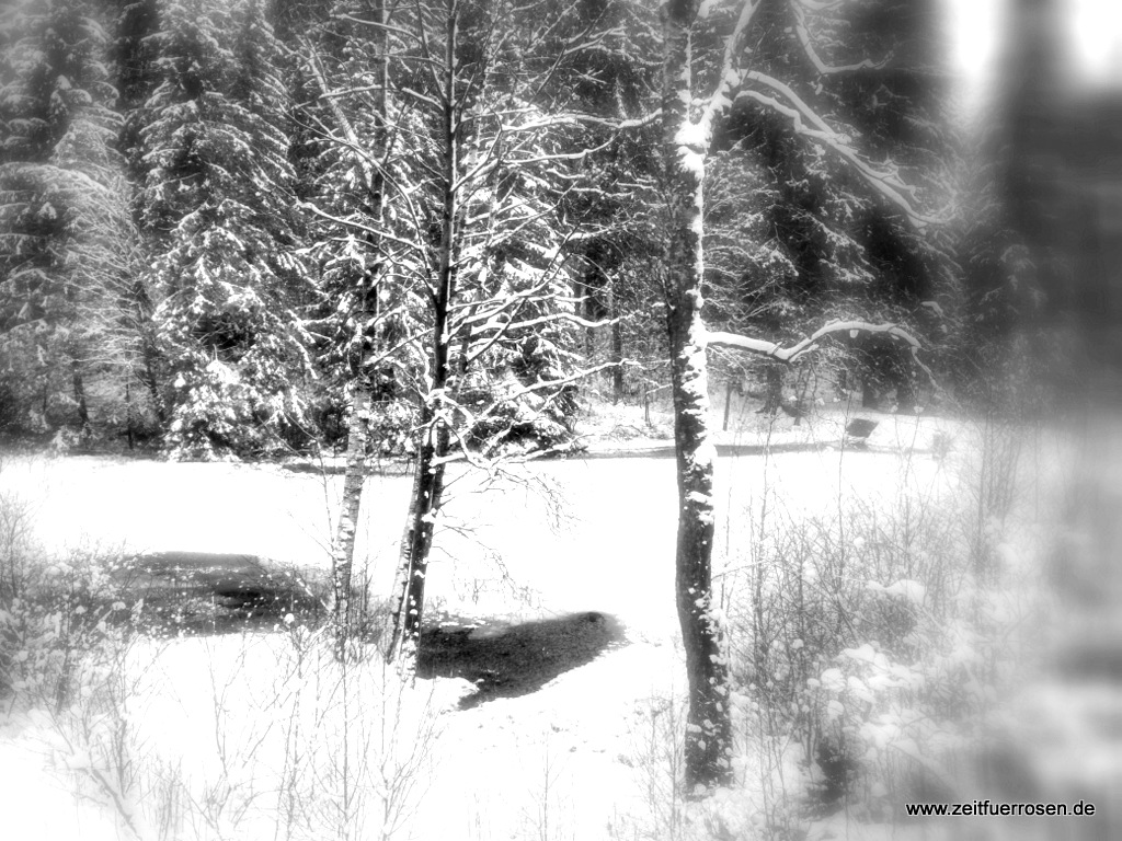 Der Winter und die Jahreszeiten des Lebens
