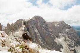 Neugierige Dole am Monte Mulaz