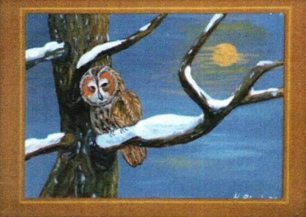 Gemälde von Hanni Bieri: eine Eule auf einem verschneiten Ast im Mondschein. Zeitlupe.