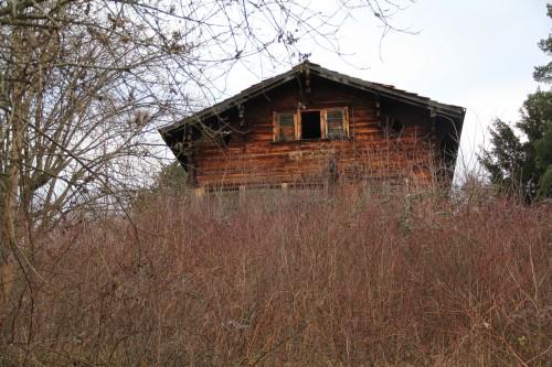Haus-am-Hungerbachweg-2