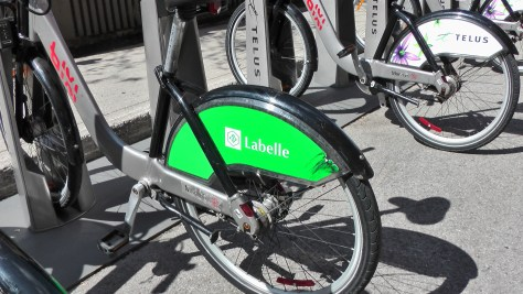 Labelle on the back of a Bixi.