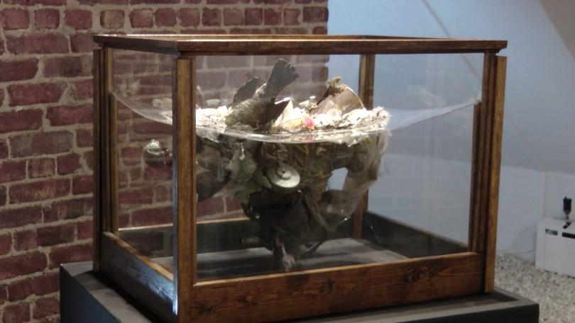Kate Puxley, Still Life with Mouse, Naturalized tilapia, bird, mouse, various plastics, plexiglas, wire