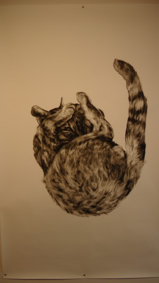 "Kate Puxley: Animals in the City: Gatto Italiano #2, Charcoal on Paper, approx 85"" x 52"""