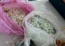 Shredded paper for papermaking