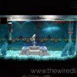 The Legend of Zelda brought to life underwater