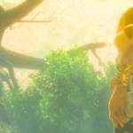 Wii U version of Breath of the Wild requires 3GB+ of storage to play