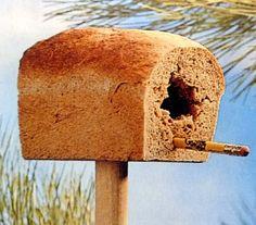годівничка для птахів з хліба