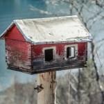 Як змайструвати шпаківню чи годівничку для птахів – 15 фото