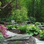 """Ландшафтний дизайн для новачків. Створюємо """"лінивий"""" сад"""