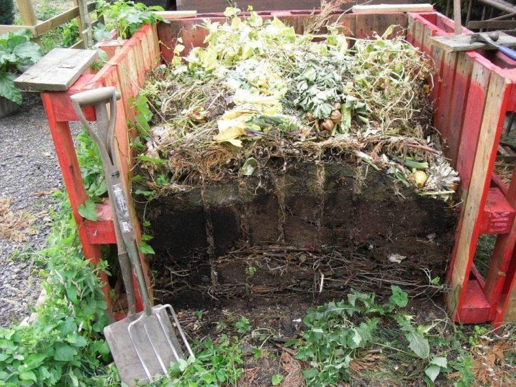 Компост - основа органічного землеробства