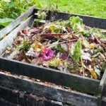 Компост – основа органічного землеробства