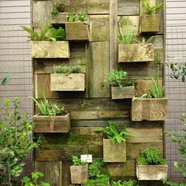 вертикальне озеленення зображення 30