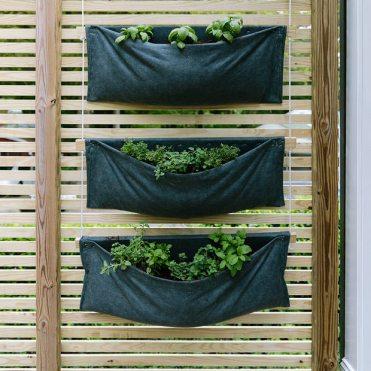 вертикальне озеленення зображення 38