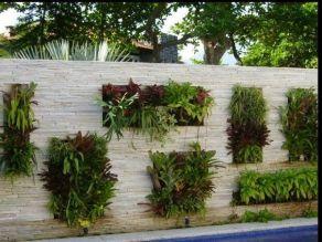 вертикальне озеленення зображення 50