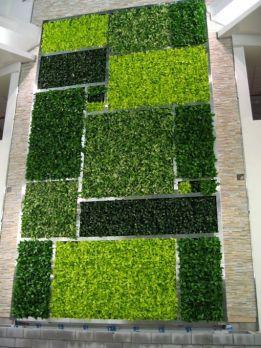 вертикальне озеленення зображення 59