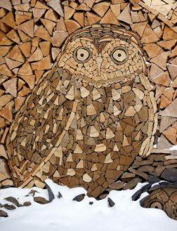дрова картинка 2
