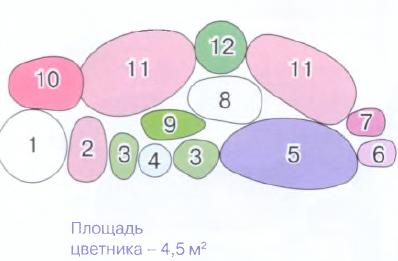 квітник зображення 19 (схема)