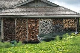 дрова картинка 23