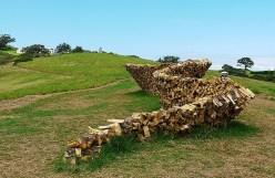 дрова картинка 9