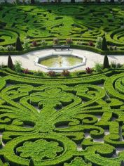ідеї для саду картинка 1