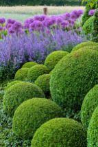 ідеї для саду картинка 11