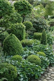 ідеї для саду картинка 19