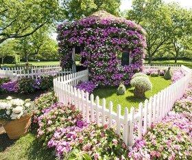 ідеї для саду картинка 36