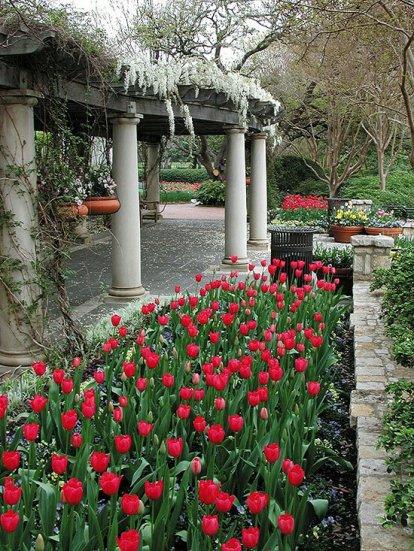 ідеї для саду картинка 39