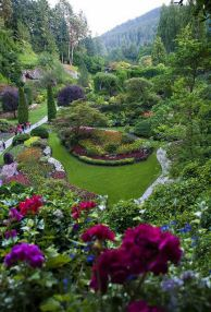 ідеї для саду картинка 55