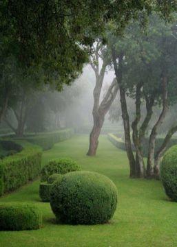 ідеї для саду картинка 7
