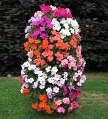 квітник своїми руками картинка 22