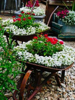 квітник своїми руками картинка 32