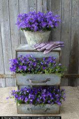 квітник своїми руками картинка 31