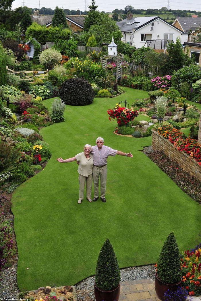 прекрасний сад