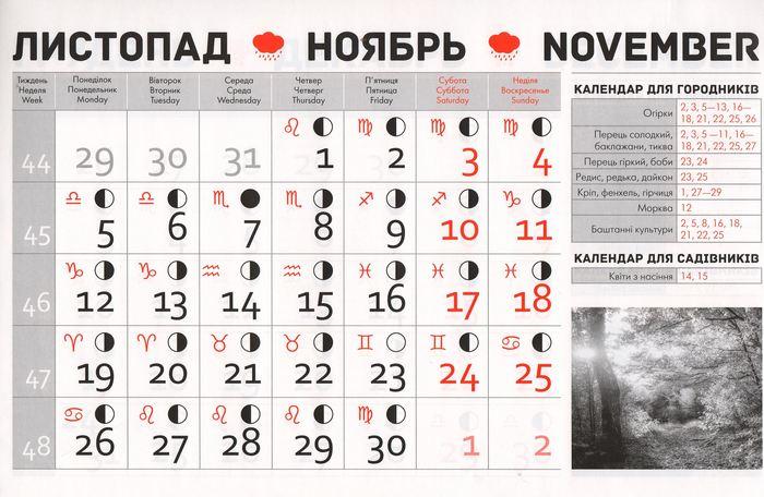 Посівний календар на листопад 2018 року фото