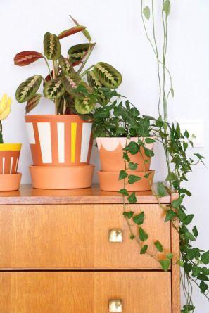 Геометричні фігури на горщиках для кімнатних рослин