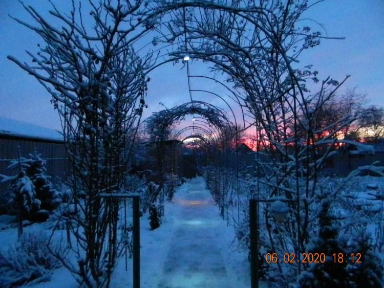 Арковий тунель прикрашає подвір'я навіть зимою