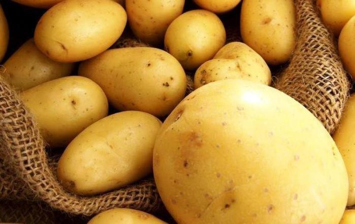 Картопля «Рів'єра» (Riviera)