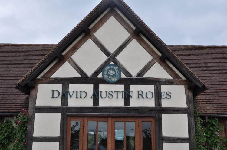 Наразі розплідник Девіда Остіна є комерційно успішним не тільки в Великобританії, але й в усьому світі