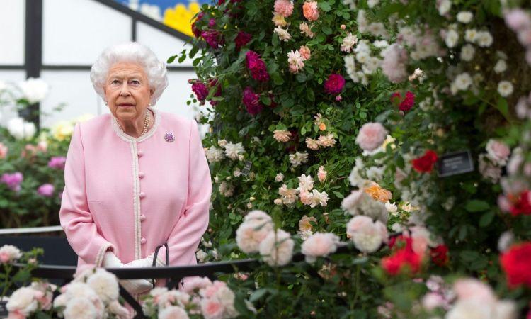 Більшість членів королівської родини - постійні відвідувачі щорічного весняного квіткового шоу в Челсі