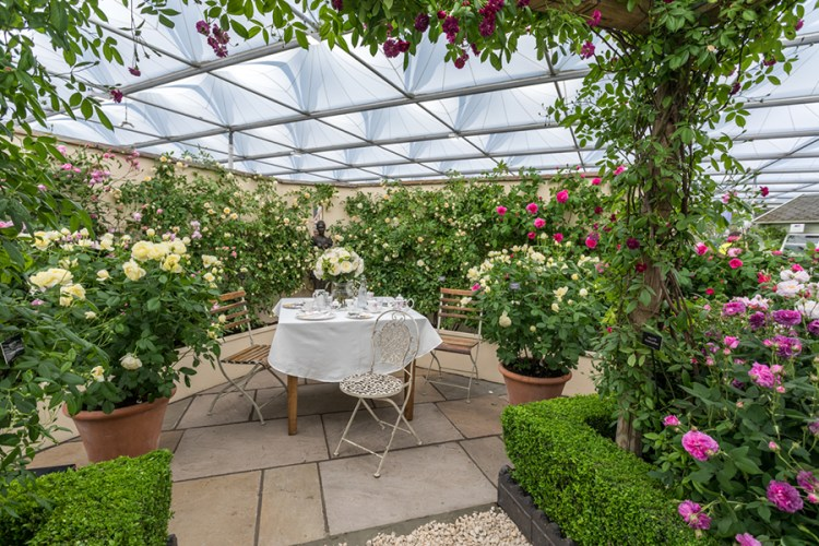 Квіткове шоу в Челсі - найвідоміший показ садів у Великій Британії, а можливо, і у світі