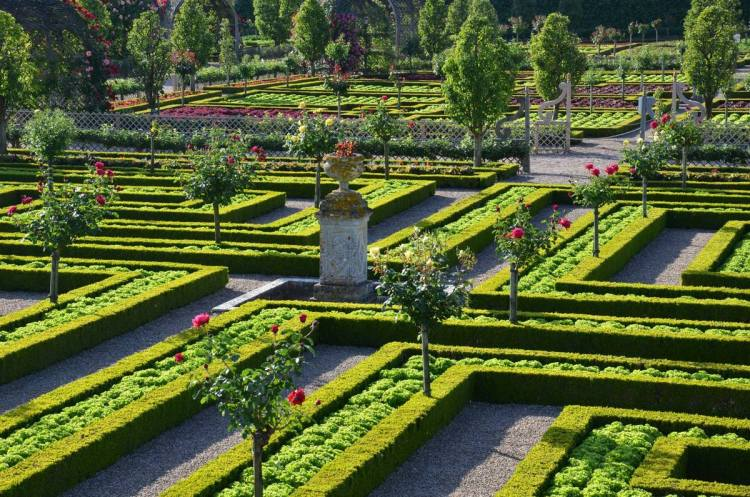 Декоративний кухонний сад, або овочевий сад (The Kitchen Garden, Potager)