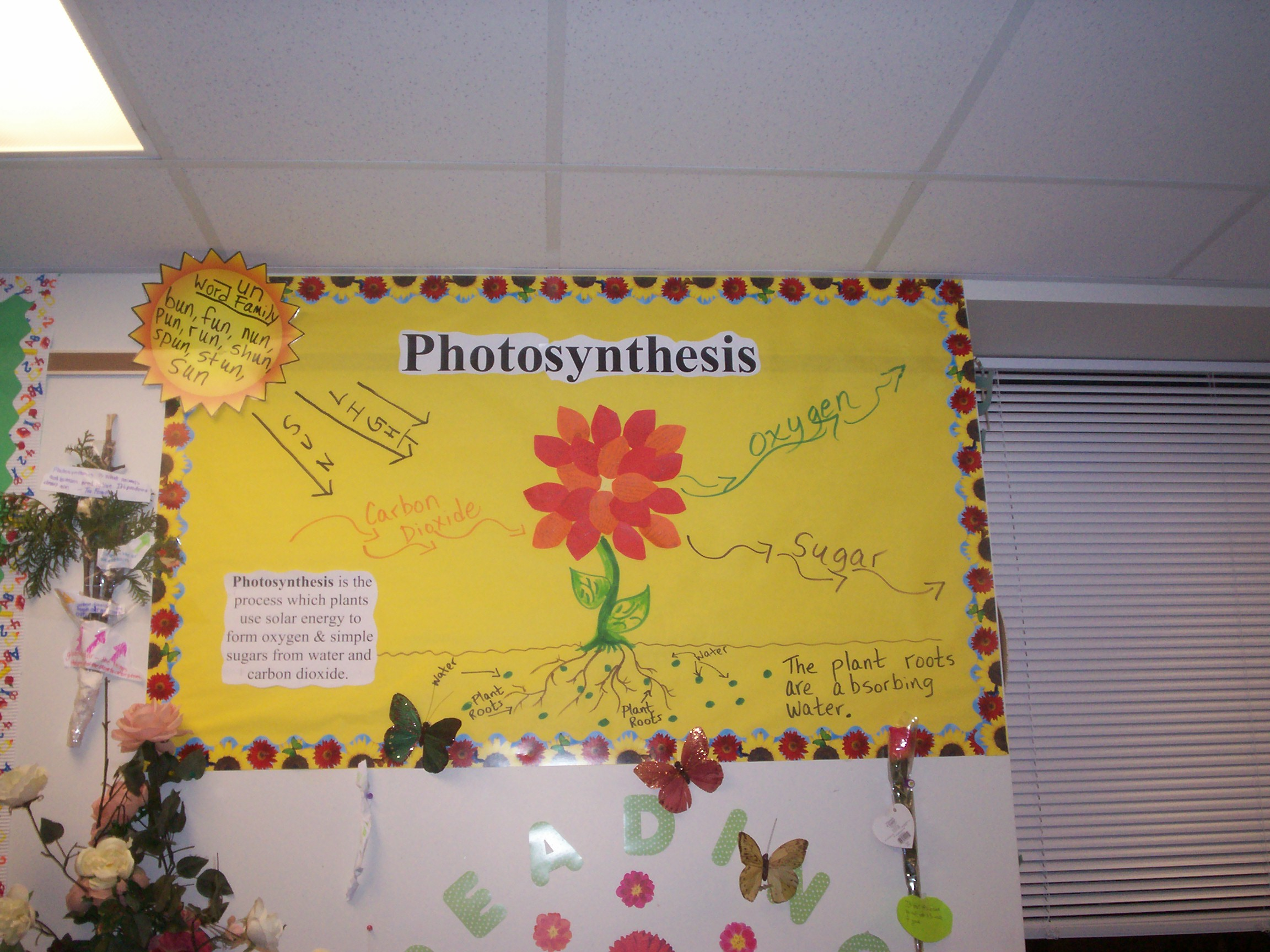 Images About Science Bulletin Board Ideas On
