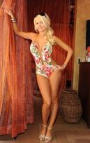 holly-madison-the-girls-next-door-bathing-suit-14376132897_xlarge
