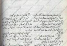 Dil ki Dharkan Tum Ho by Iffat Sehar Tahir