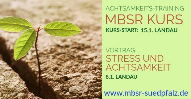 MBSR Kurs und Vortrag 2018